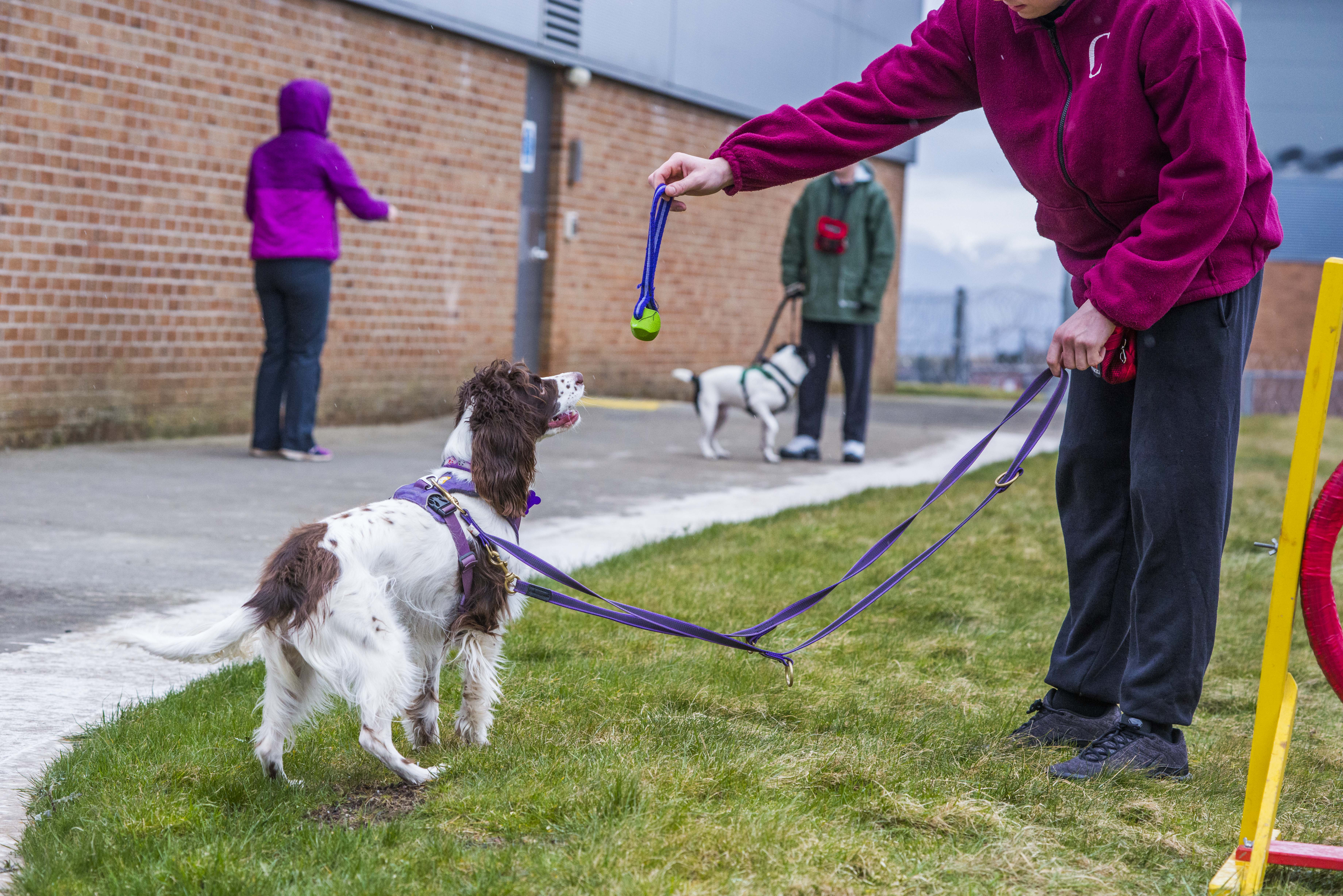 People and dogs together Unleashing potential, improving lives